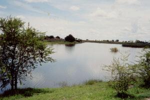 Africa, Botswana, Chobe River1 WEB
