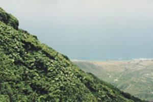 Caribbean, Island of Nevis-1A WEB