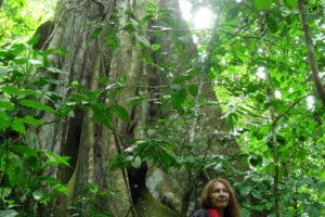 Ecuador, Amazon, Vijali WEB
