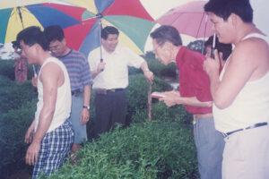 Taiwan-6B WEB
