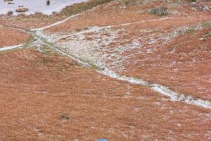 UK England, Lake District-8A WEB