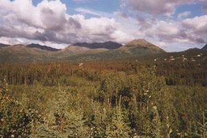 USA Alaska, Anchorage-6A WEB