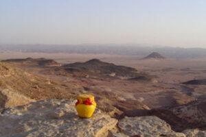Egypt, Sinai, Forest of Pillars 1 WEB