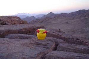 Egypt, Sinai, Wadi Sheich Hasjasj 1 WEB