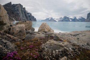 Canada, Northern Davis Strait, Nunavut