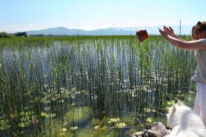 6-DKR-vase-lake-Ohrid-7s