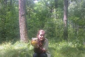 Belarus, Mazyr 2015-06-22 Vase in forest 2